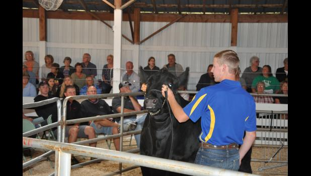 Hunter Fredrickson, Independence FFA, exhibited his 1,500-pound beef steer for bidders during the Buffalo County Fair Junior Livestock Sale, held Friday evening, Aug. 4, at the fairgrounds in Mondovi. Fredrickson's steer was purchased by Countryside Co-op for $1.75 per pound.