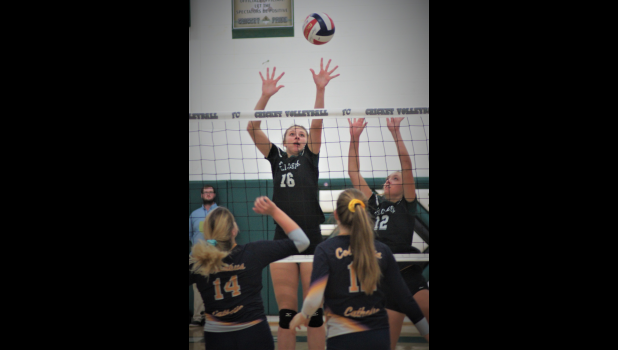 Fall Creek volleyball player Gianna Vollrath goes for a spike attempt vs. Marshfield Columbus